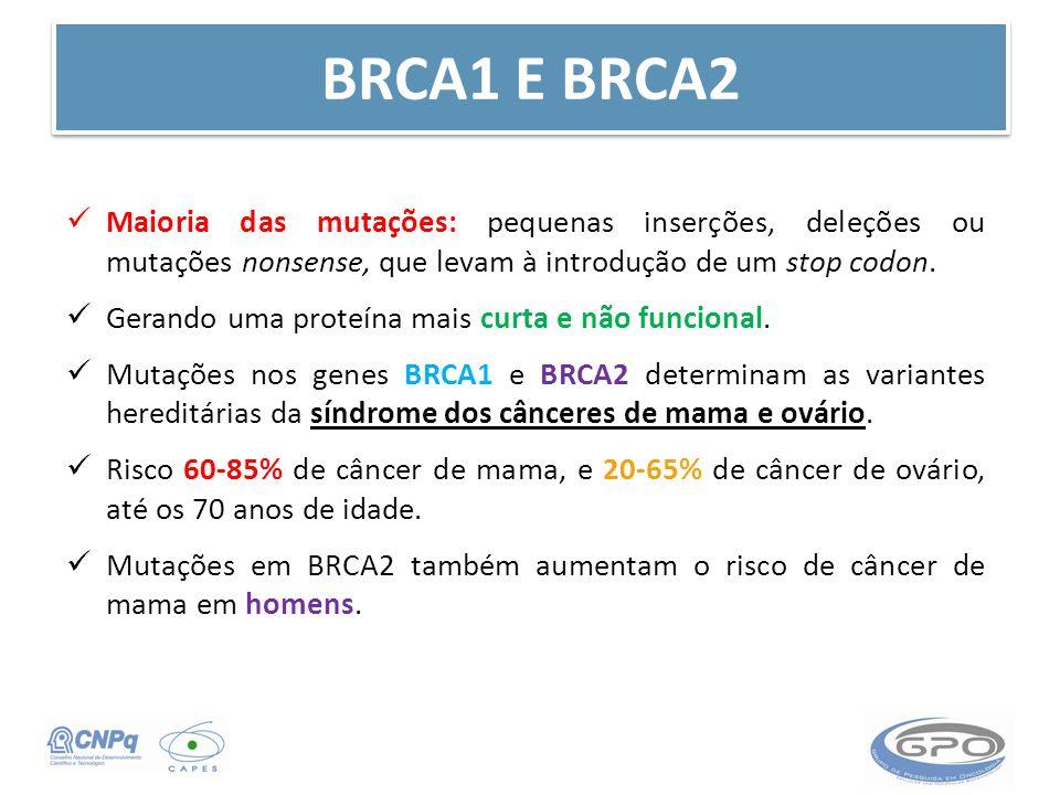 BRCA1 E BRCA2 Maioria das mutações: pequenas inserções, deleções ou mutações nonsense, que levam à introdução de um stop codon.