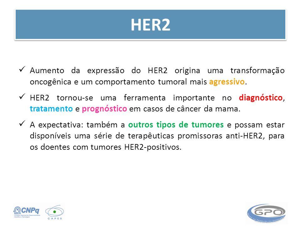 HER2 Aumento da expressão do HER2 origina uma transformação oncogênica e um comportamento tumoral mais agressivo.