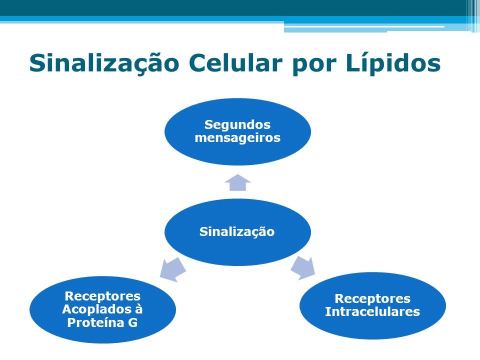 Sinalização Celular por Lípidos