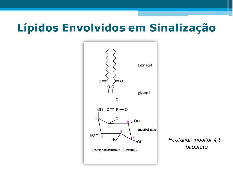Fosfatidil-inositol 4,5 - bifosfato