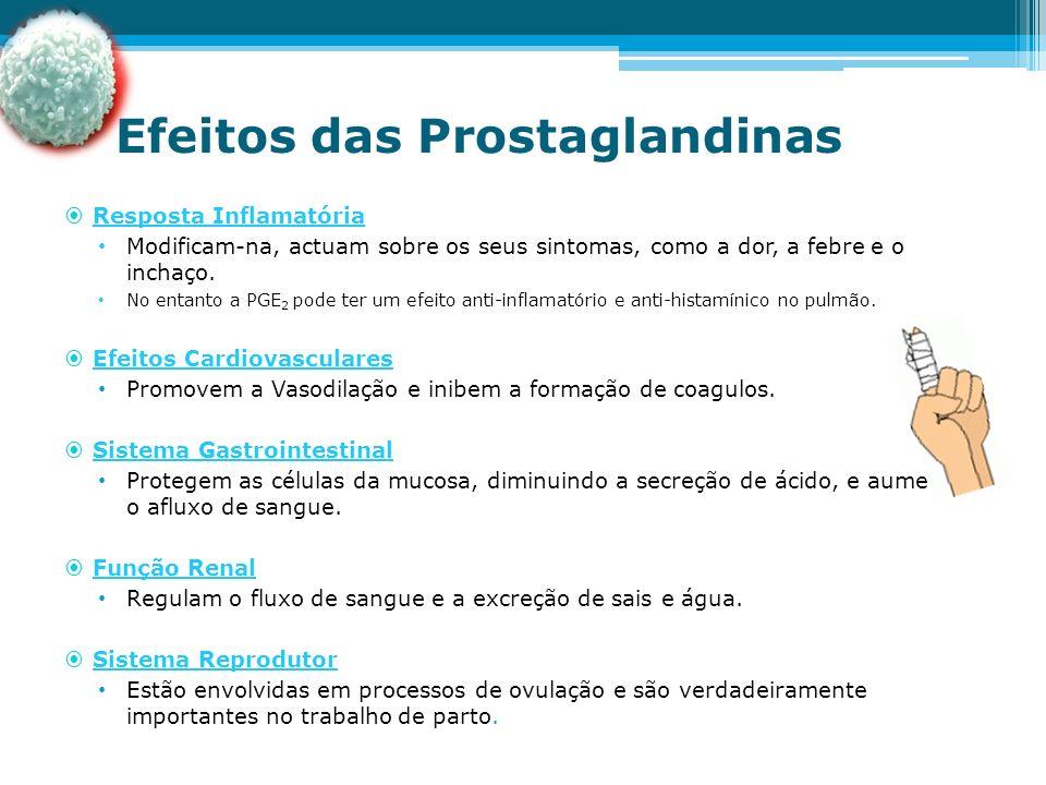 Efeitos das Prostaglandinas
