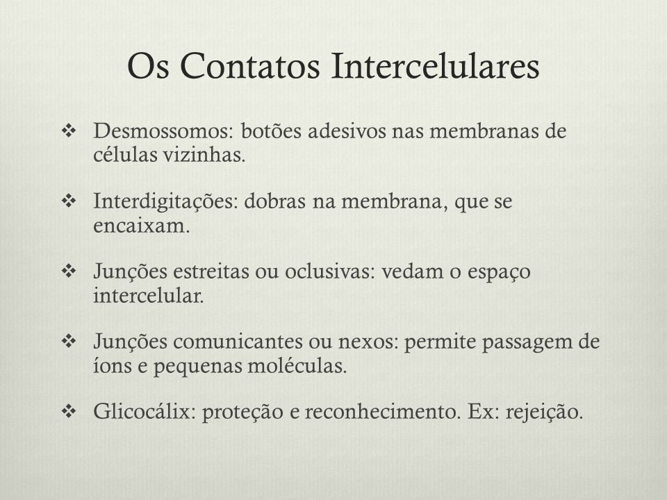 Os Contatos Intercelulares