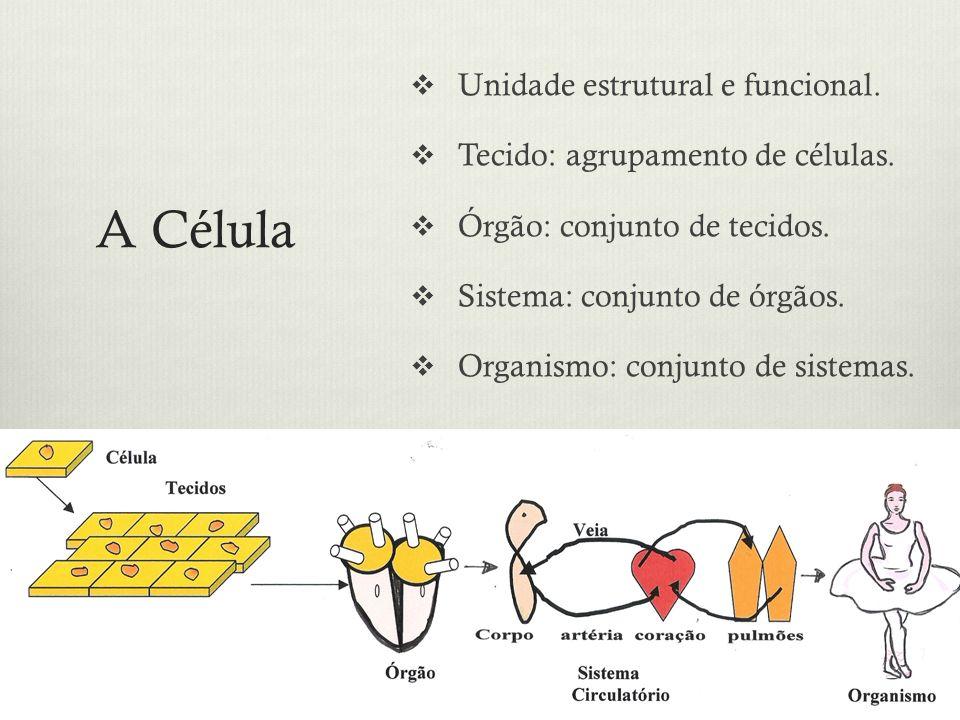 A Célula Unidade estrutural e funcional.