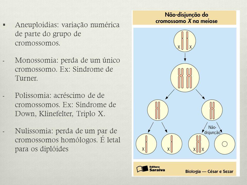 Aneuploidias: variação numérica de parte do grupo de cromossomos.