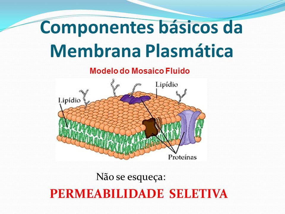 Componentes básicos da Membrana Plasmática