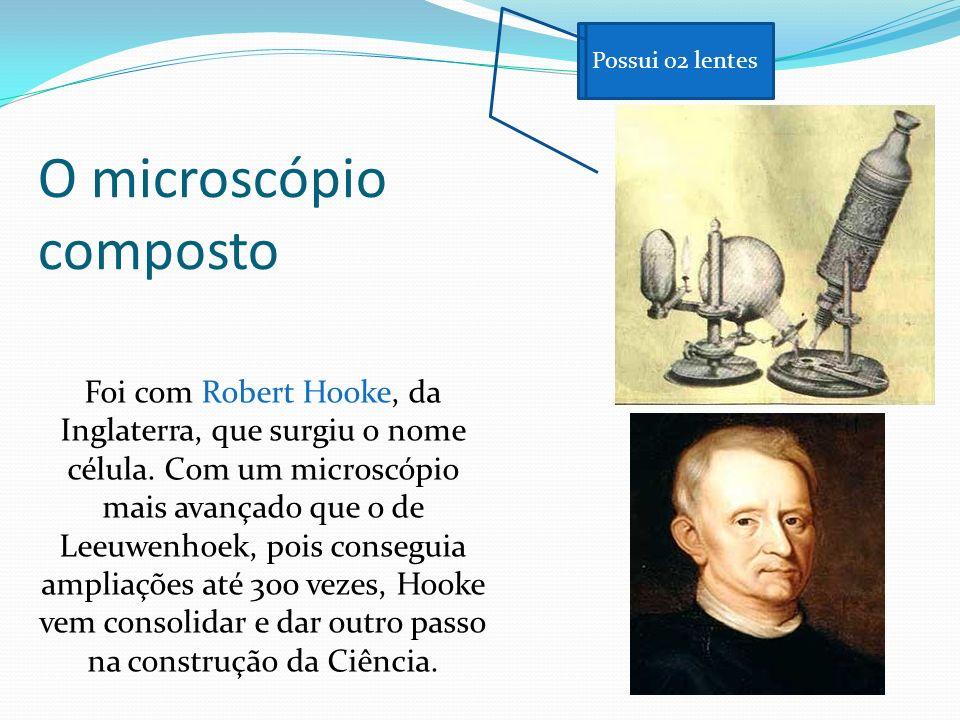 O microscópio composto