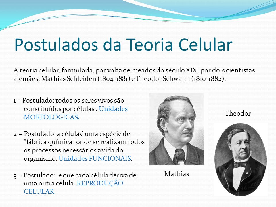 Postulados da Teoria Celular