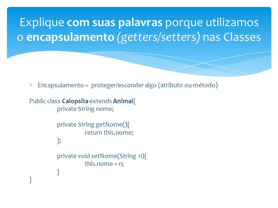 Explique com suas palavras porque utilizamos o encapsulamento (getters/setters) nas Classes