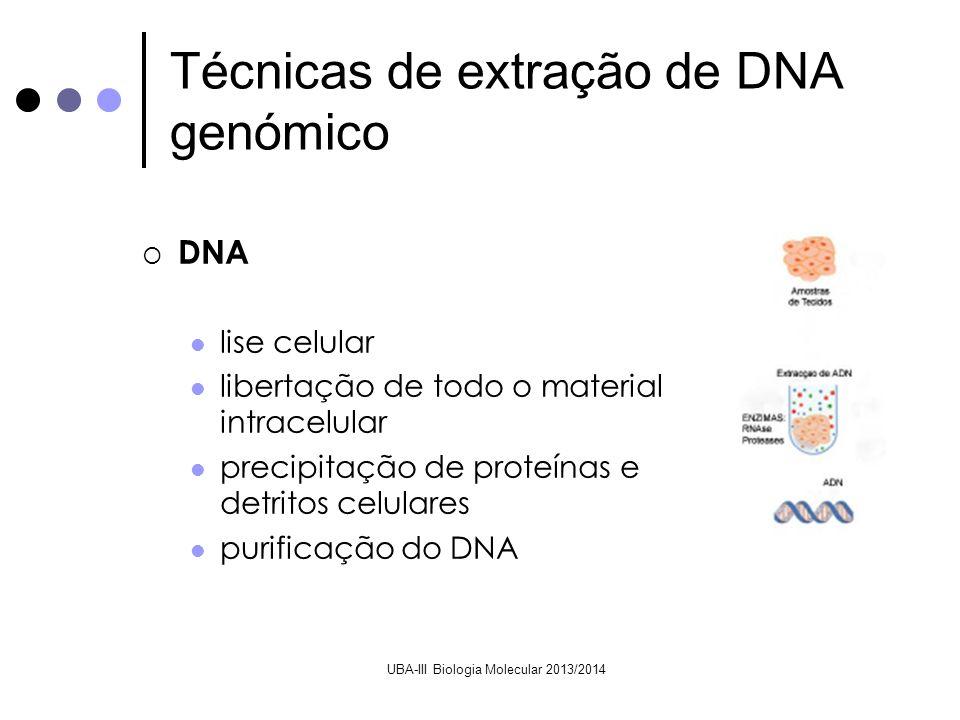 UBA-III Biologia Molecular 2013/2014