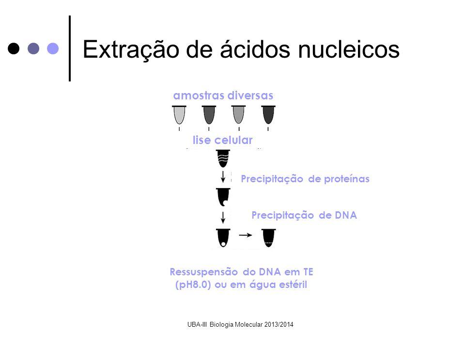 Extração de ácidos nucleicos