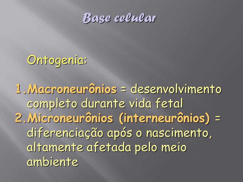 Base celular Ontogenia: