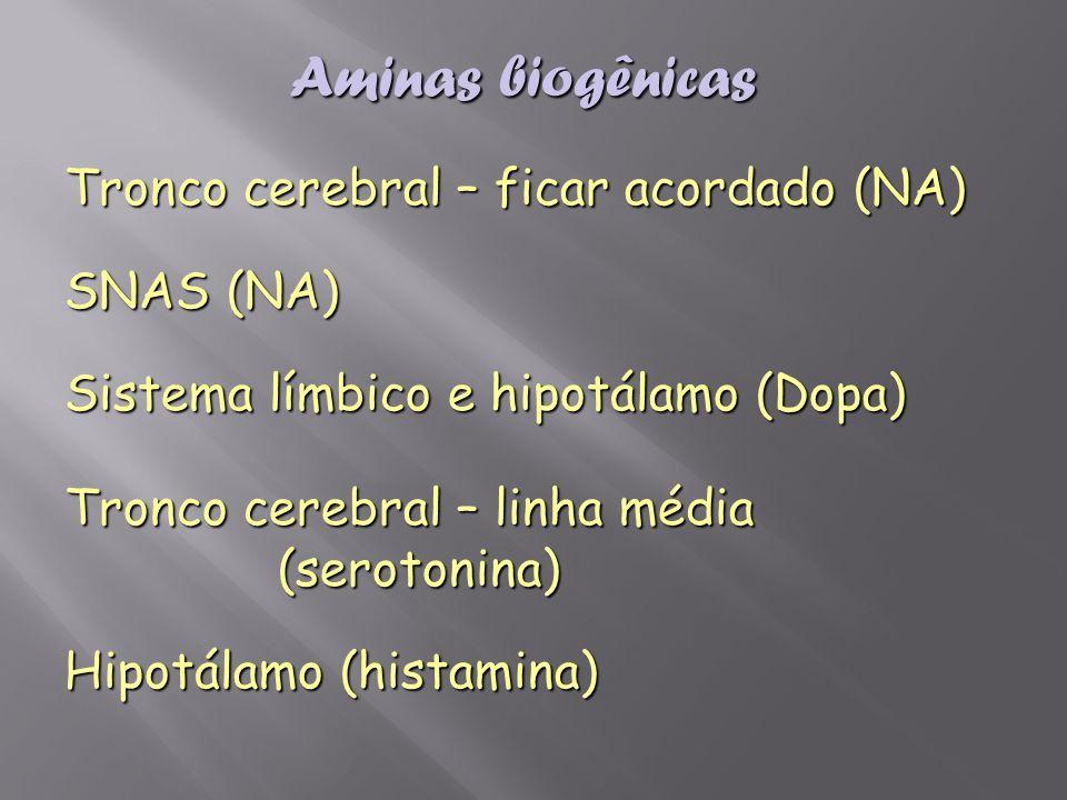 Aminas biogênicas Tronco cerebral – ficar acordado (NA) SNAS (NA)