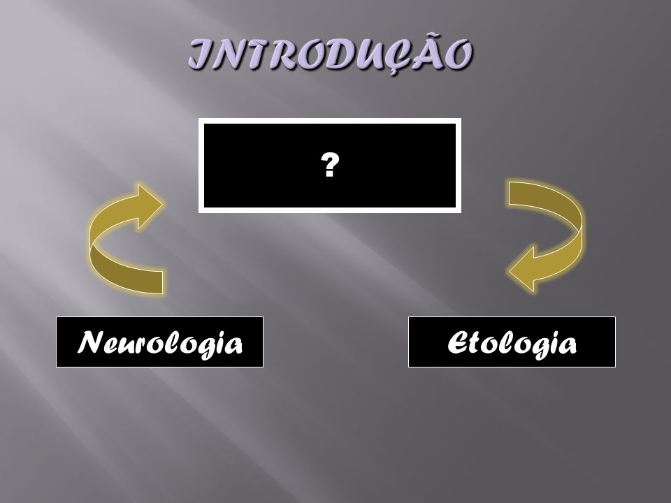 Introdução Neurologia Etologia