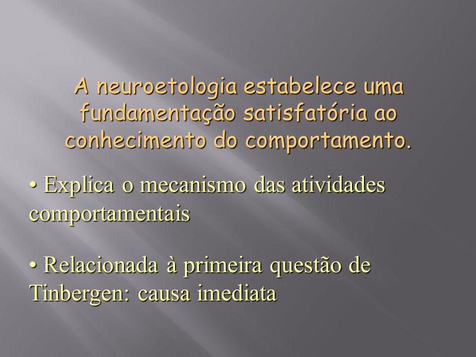 Explica o mecanismo das atividades comportamentais
