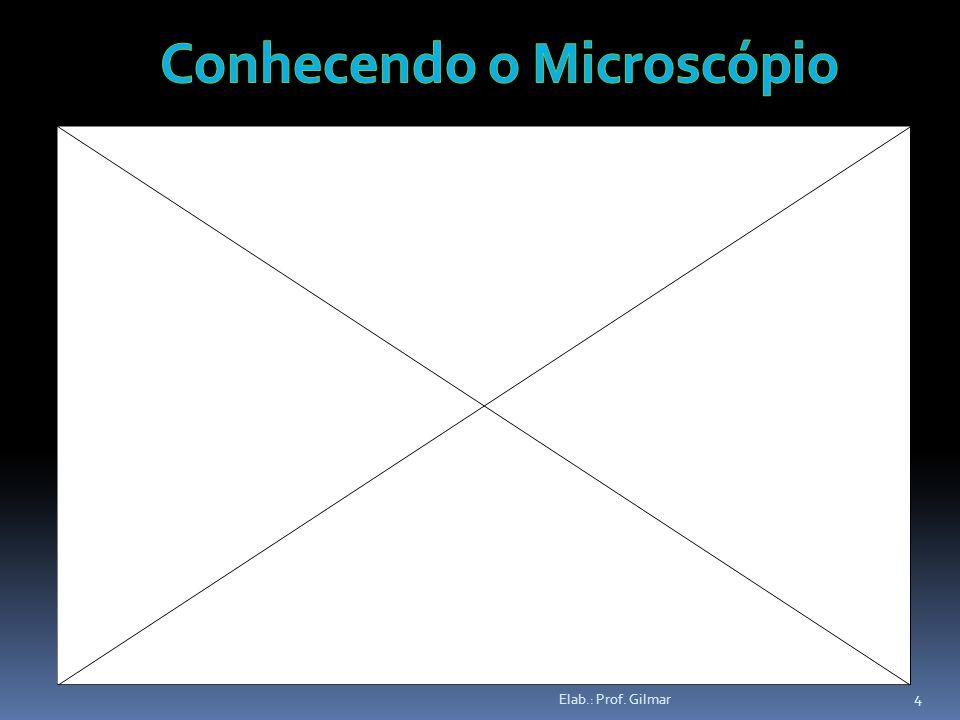 Conhecendo o Microscópio