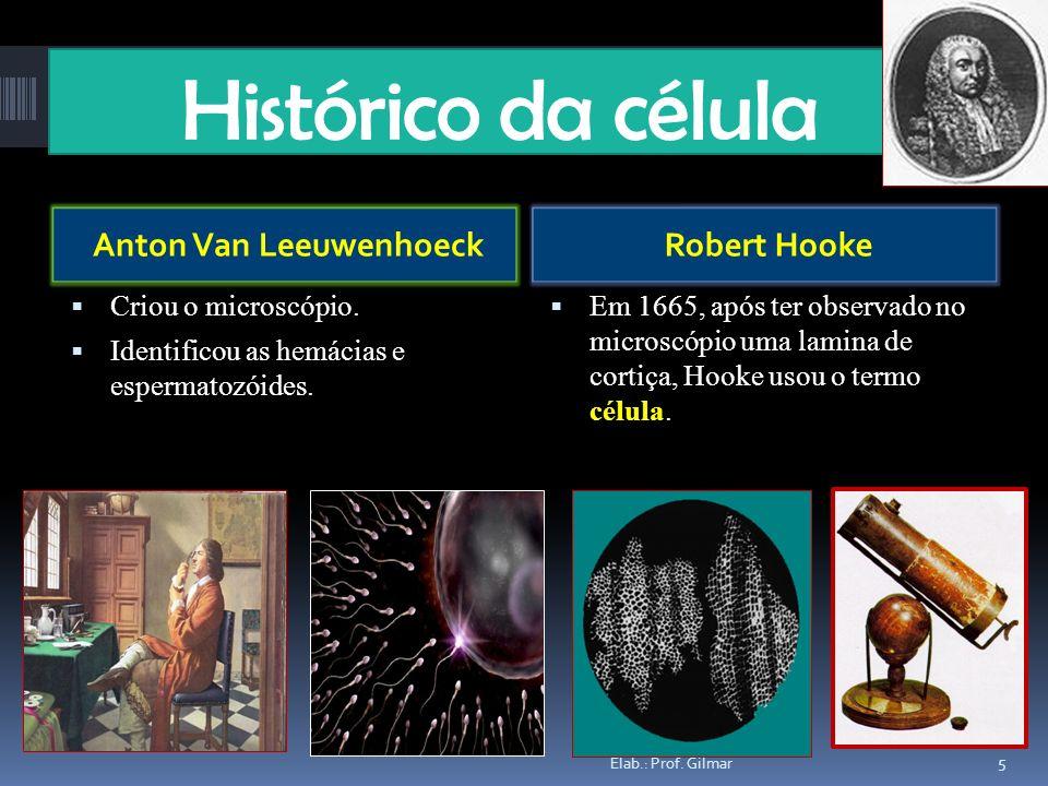 Anton Van Leeuwenhoeck