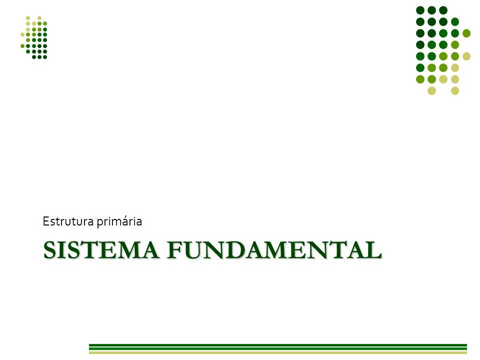 Estrutura primária Sistema fundamental