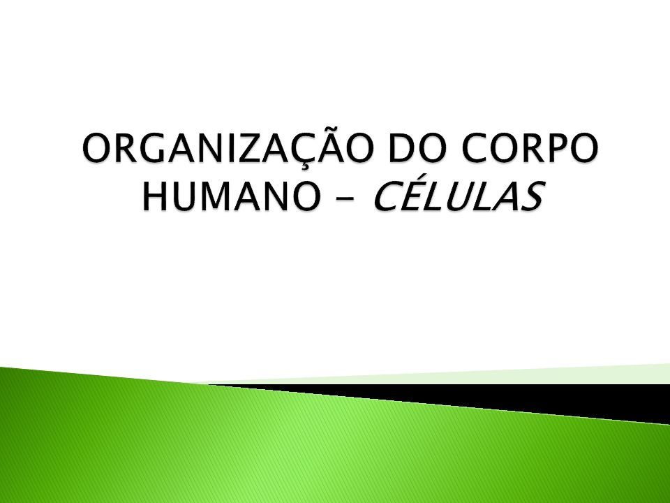 ORGANIZAÇÃO DO CORPO HUMANO - CÉLULAS