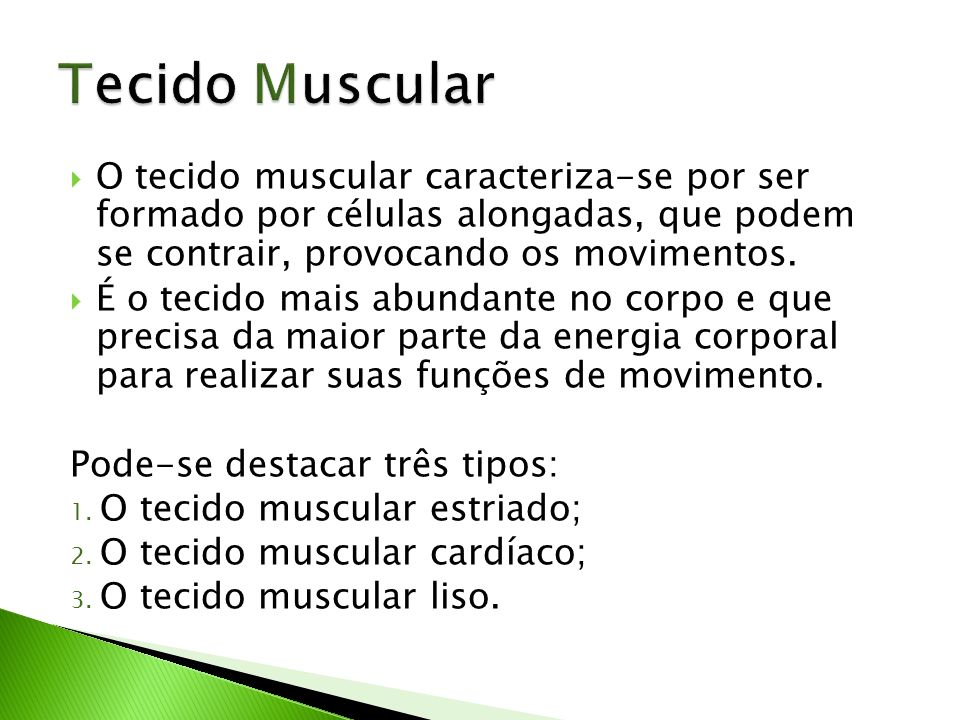 Tecido Muscular O tecido muscular caracteriza-se por ser formado por células alongadas, que podem se contrair, provocando os movimentos.