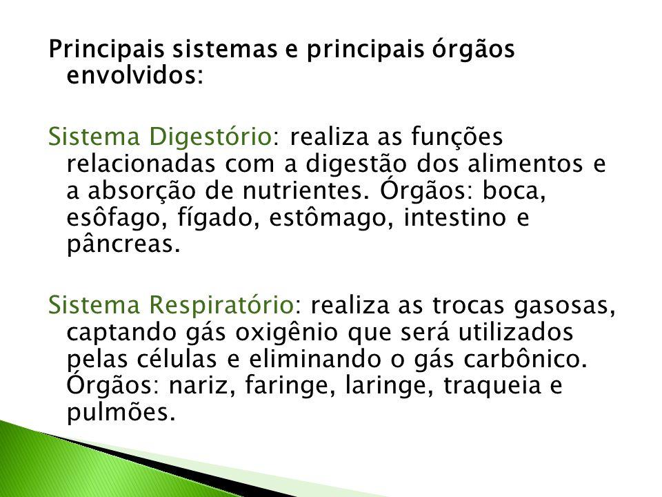 Principais sistemas e principais órgãos envolvidos: