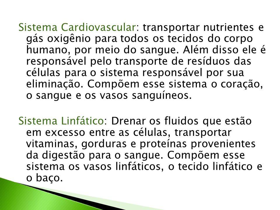 Sistema Cardiovascular: transportar nutrientes e gás oxigênio para todos os tecidos do corpo humano, por meio do sangue.