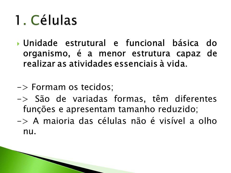 1. Células Unidade estrutural e funcional básica do organismo, é a menor estrutura capaz de realizar as atividades essenciais à vida.