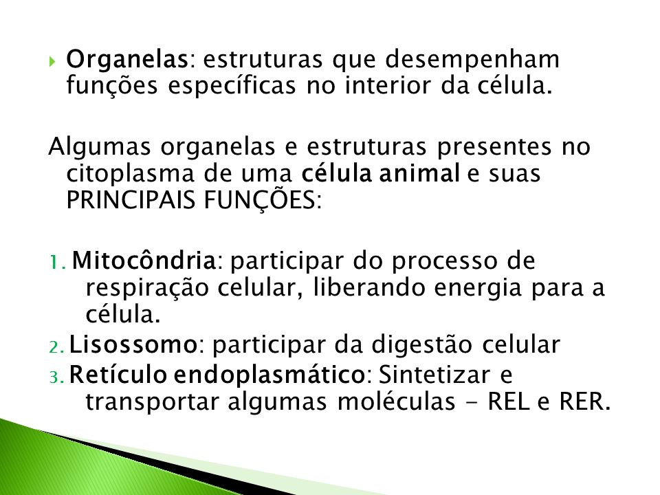Organelas: estruturas que desempenham funções específicas no interior da célula.