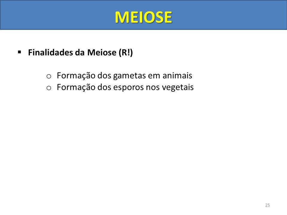 MEIOSE Finalidades da Meiose (R!) Formação dos gametas em animais