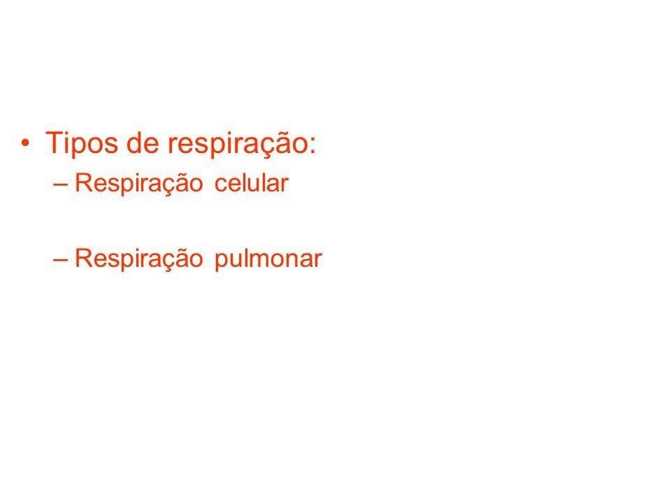 Tipos de respiração: Respiração celular Respiração pulmonar