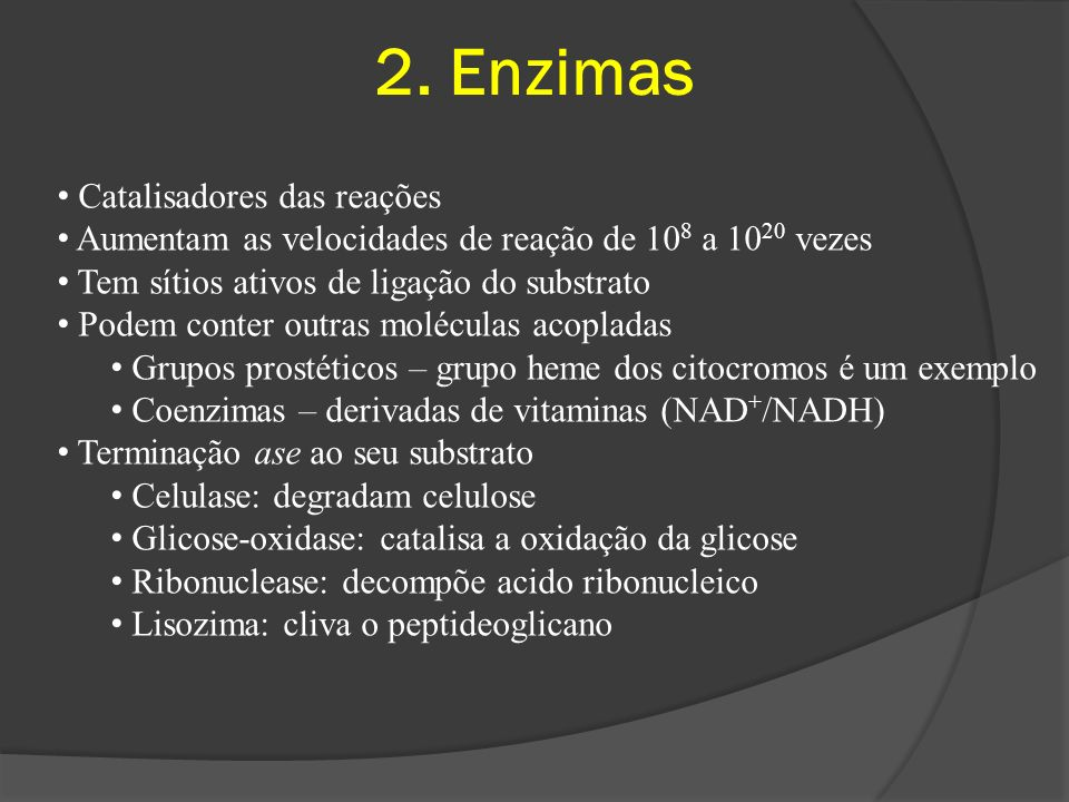 2. Enzimas Catalisadores das reações