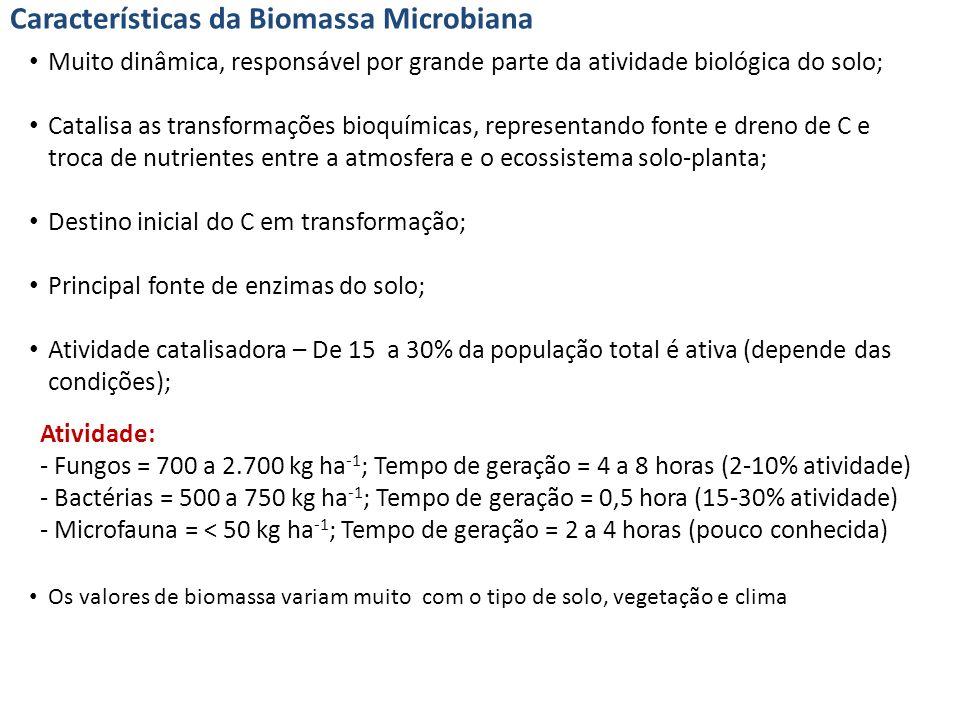 Características da Biomassa Microbiana