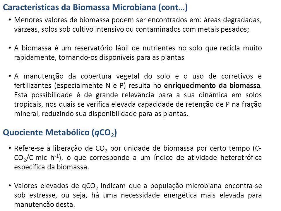 Características da Biomassa Microbiana (cont…)