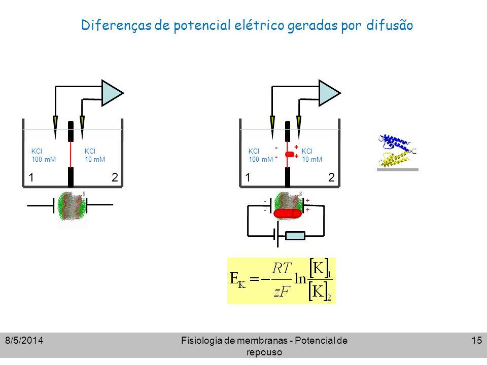 Diferenças de potencial elétrico geradas por difusão