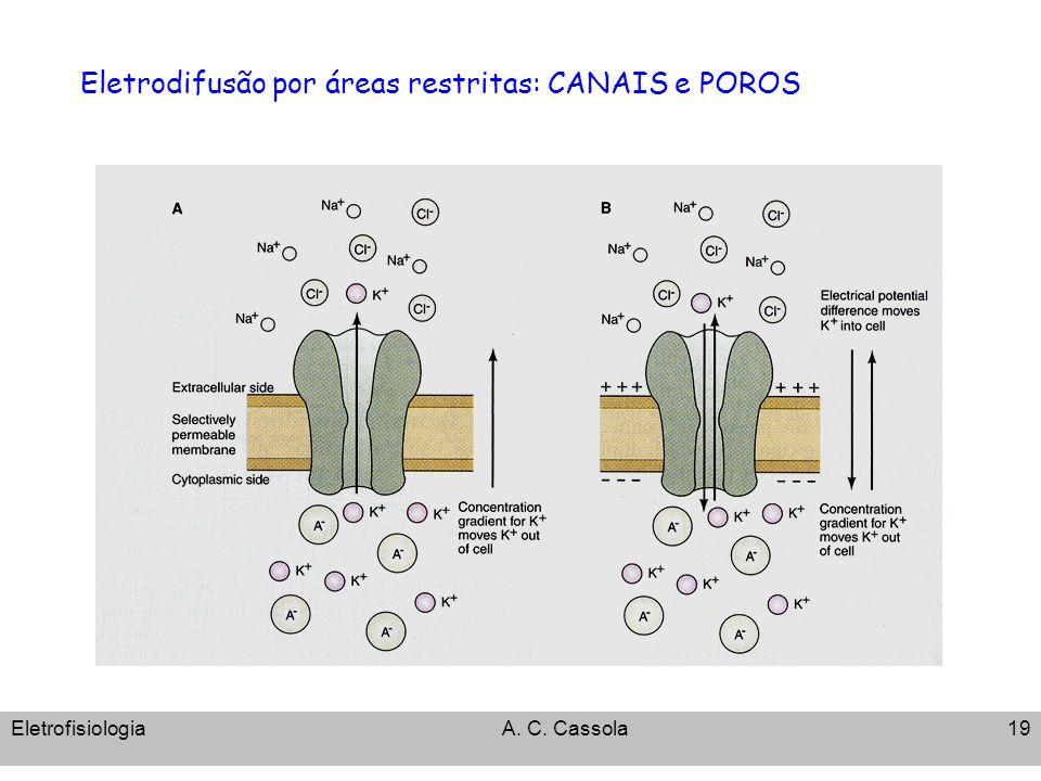 Eletrodifusão por áreas restritas: CANAIS e POROS