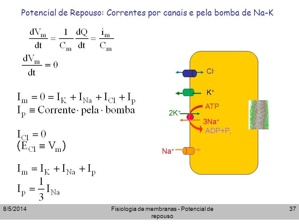 Potencial de Repouso: Correntes por canais e pela bomba de Na-K