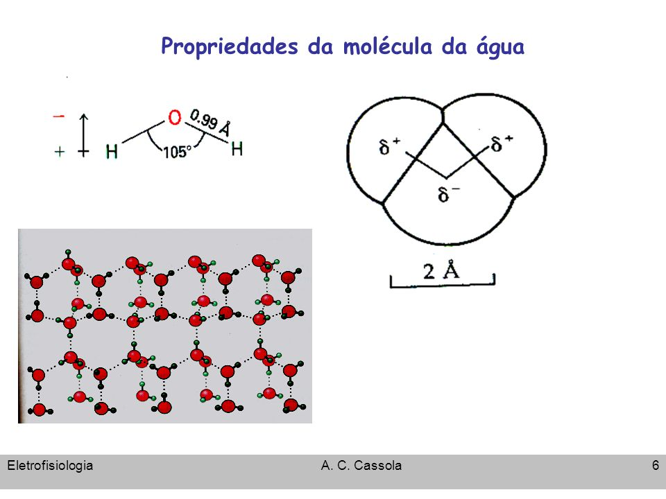 Propriedades da molécula da água