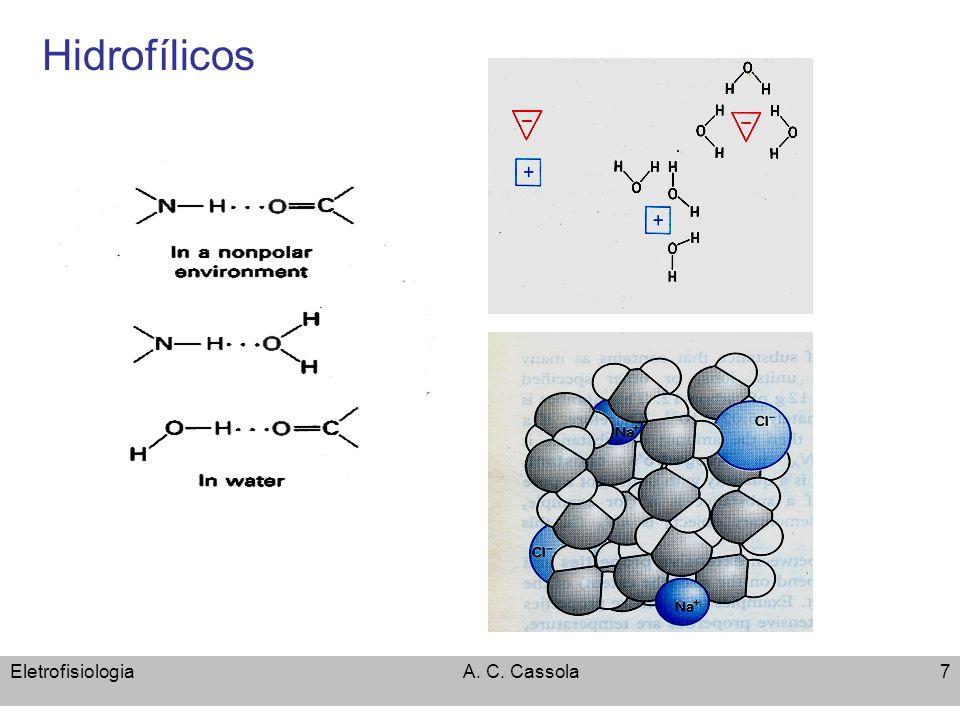 Hidrofílicos Eletrofisiologia A. C. Cassola