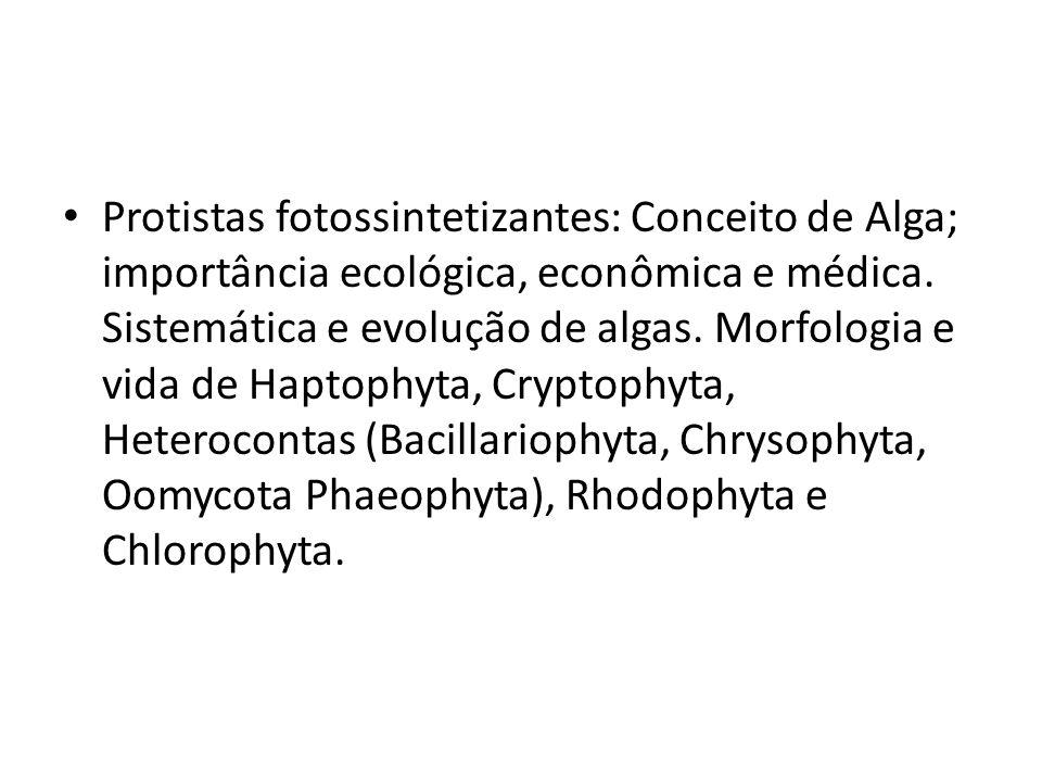 Protistas fotossintetizantes: Conceito de Alga; importância ecológica, econômica e médica.