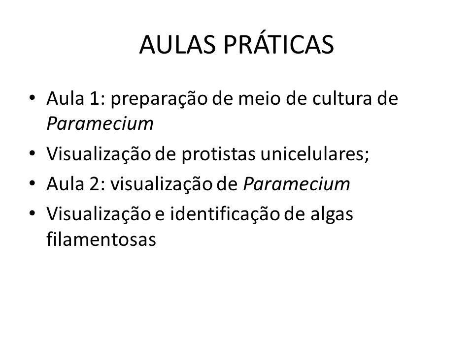 AULAS PRÁTICAS Aula 1: preparação de meio de cultura de Paramecium
