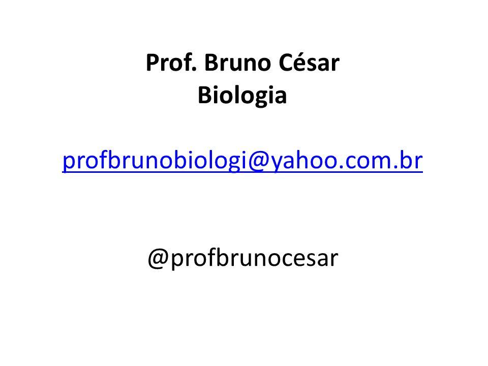 Prof. Bruno César Biologia profbrunobiologi@yahoo. com
