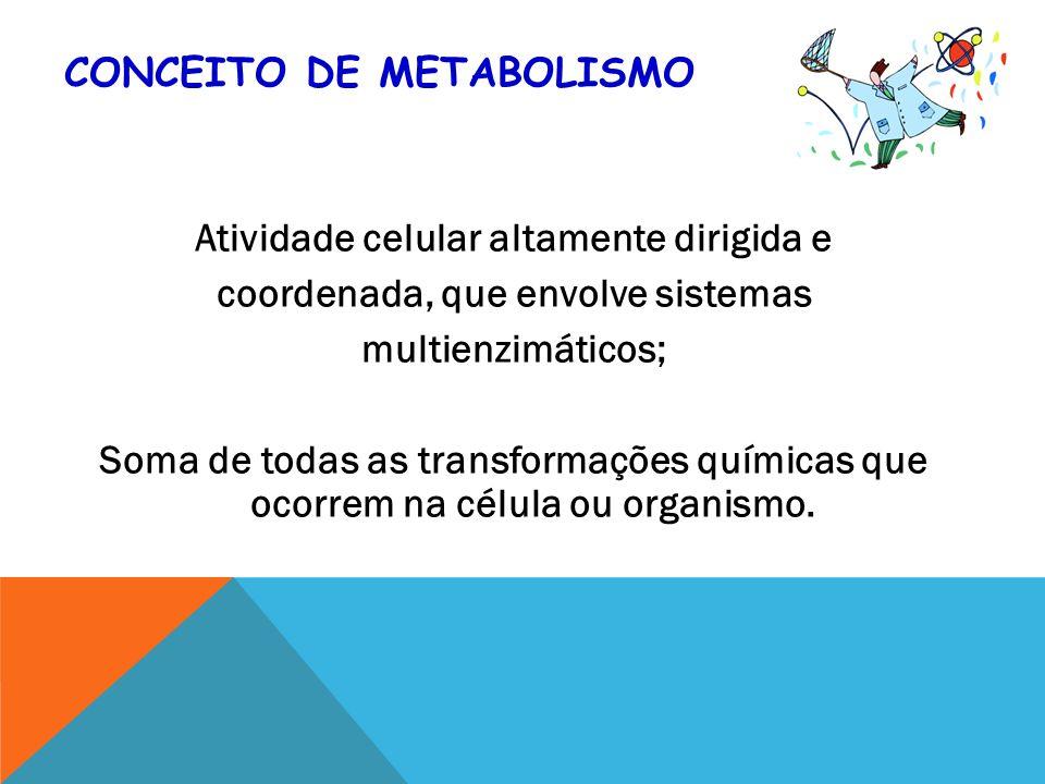 Conceito de Metabolismo