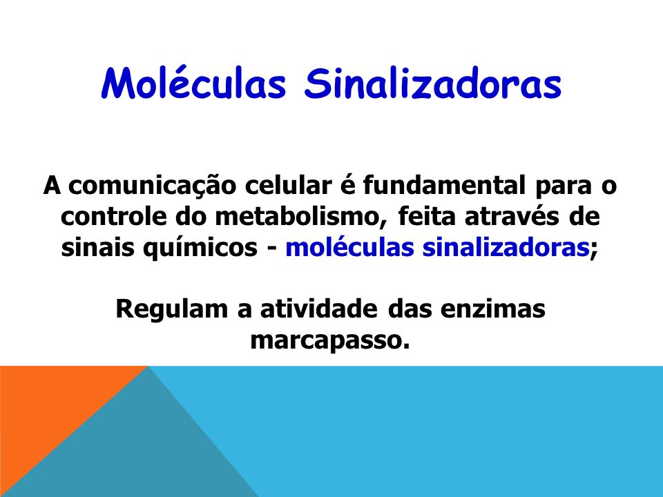 Moléculas Sinalizadoras Regulam a atividade das enzimas marcapasso.
