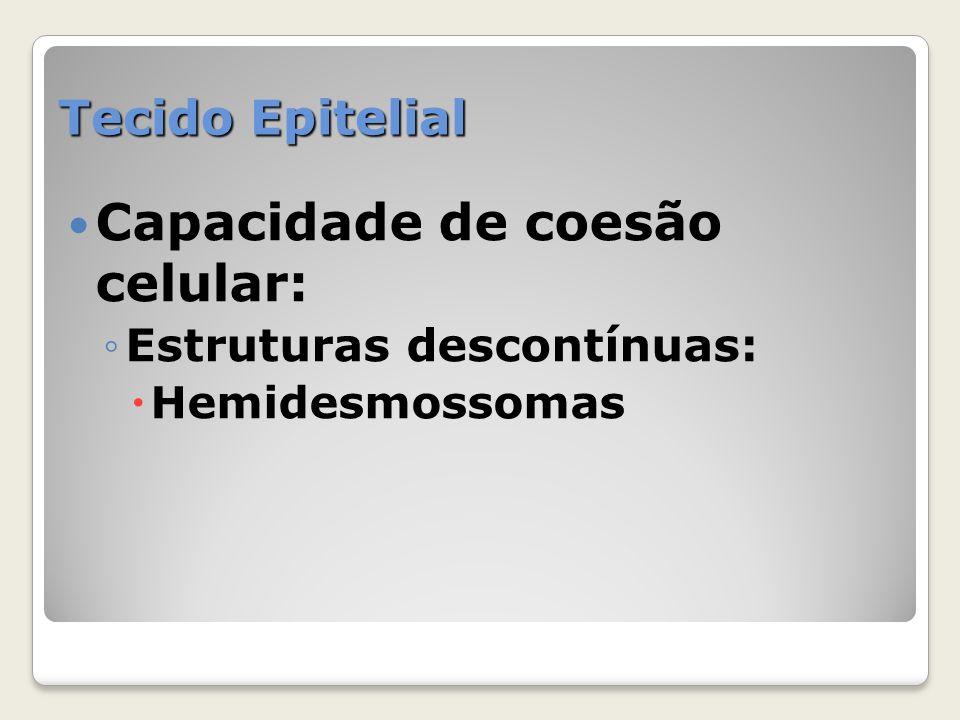 Capacidade de coesão celular: