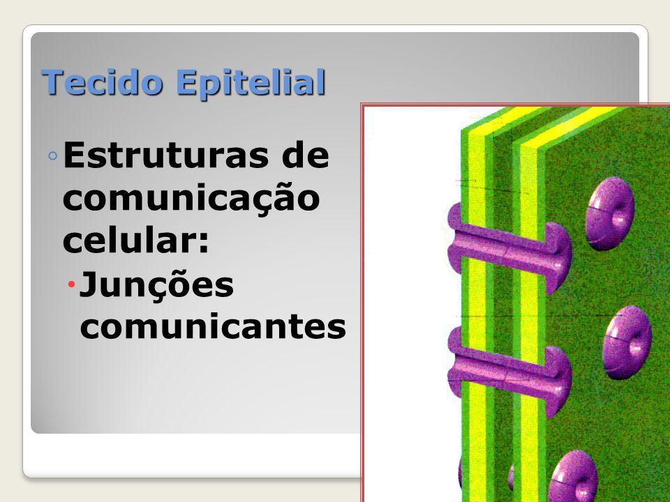 Estruturas de comunicação celular: