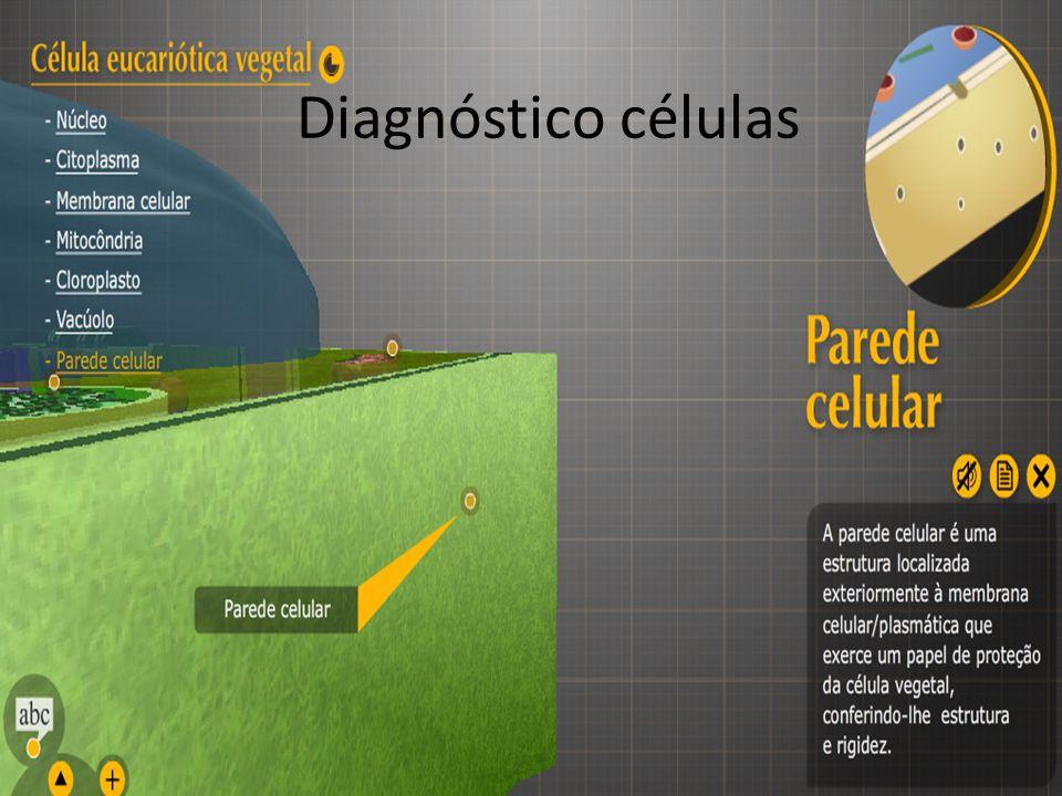 Diagnóstico células
