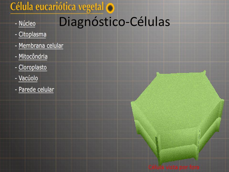 Diagnóstico-Células Célula vista por fora