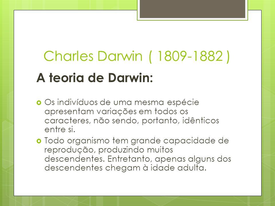 Charles Darwin ( 1809-1882 ) A teoria de Darwin: