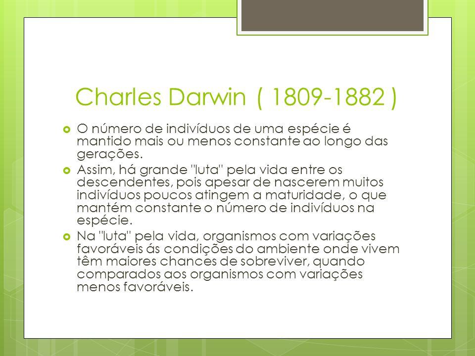 Charles Darwin ( 1809-1882 ) O número de indivíduos de uma espécie é mantido mais ou menos constante ao longo das gerações.