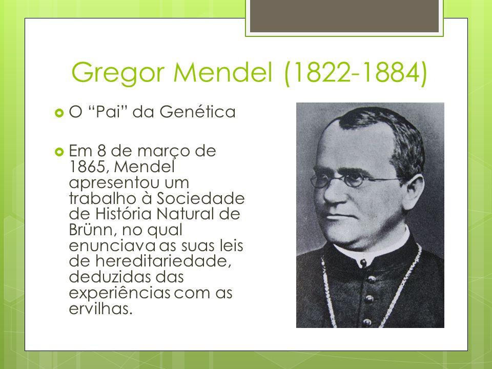 Gregor Mendel (1822-1884) O Pai da Genética