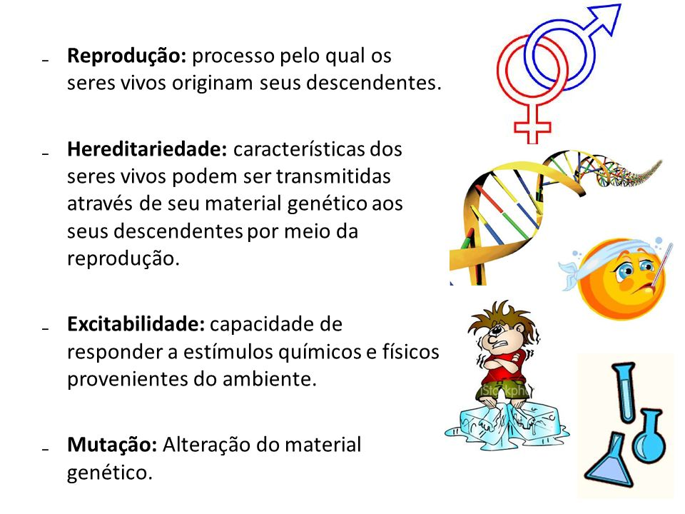Reprodução: processo pelo qual os seres vivos originam seus descendentes.